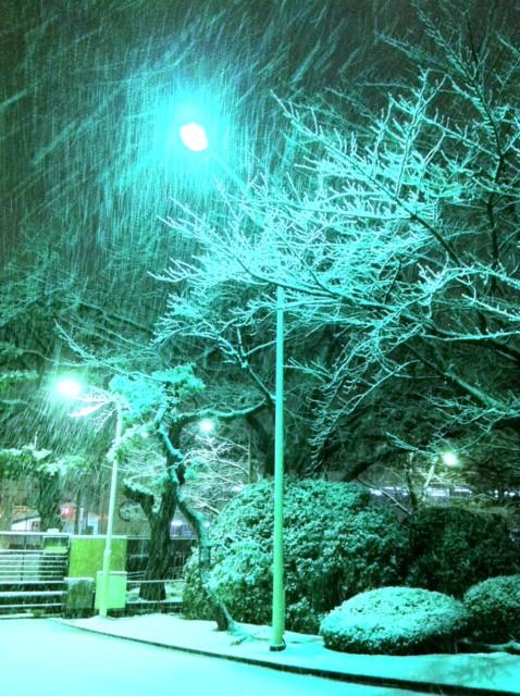 雪がコンコン!
